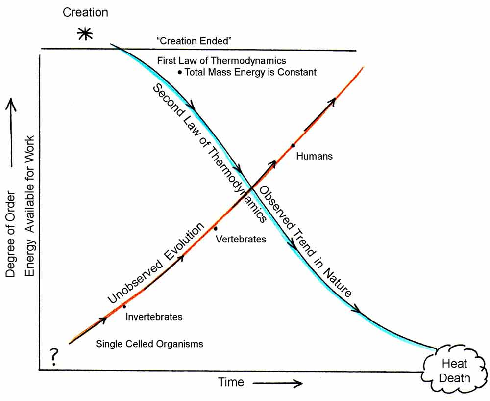 an analysis of the second law of thermodynamics vs evolution The second law of thermodynamics says that systems must become more disordered over time living cells therefore could not have evolved from inanimate chemicals, and multicellular life could not.